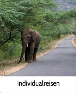 Individualreisen Vielfalt Indien