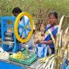 Zuckerrohrpresse-Tamil-Nadu-txs