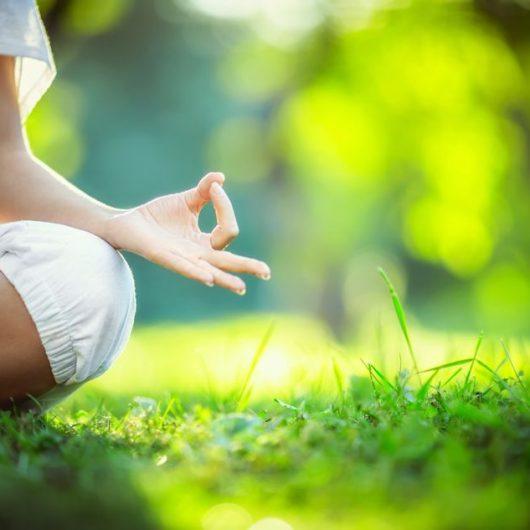 Yoga – Kleingruppenreise nach Kerala | Gruppenreise