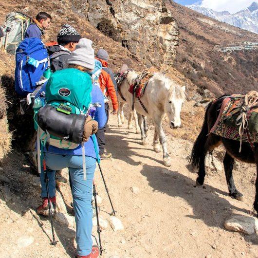 Trekkingreisen